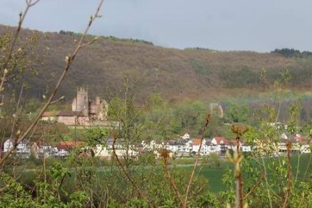 neckarsteinach, neckarsteig, wandern, Heidelberg, Bad Wimpfen, Neckarsteinach, Neunkirchen